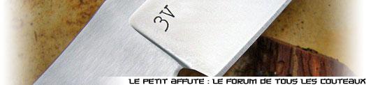 site-logo-31.jpg